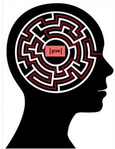 mind-maze-grow-232x3001